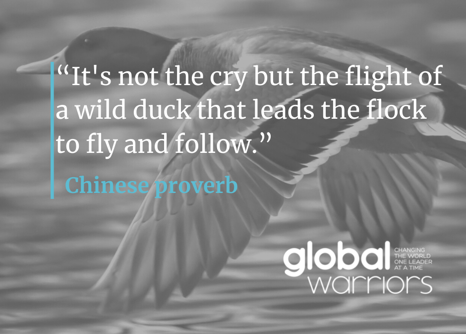 Thought for the week: What ducks can teach us about leadership